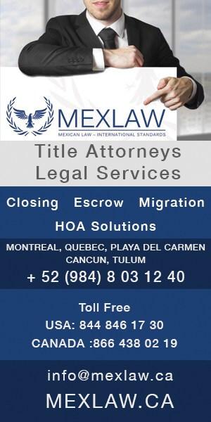 Mex Law